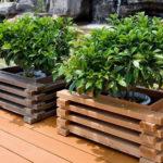 Planten bakken voor bloemen gemaakt van hout - ideeёn en realiteit